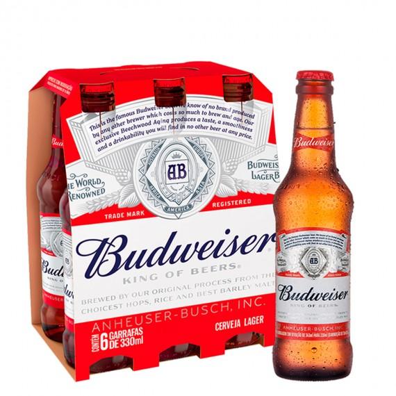 Cerveja Budweiser Long Neck Pack com 6 (3,99un)