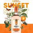 Gin Rocks Sunset 1000ml