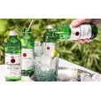 Gin Tonica Tanqueray 275ml